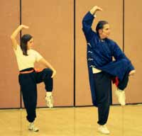Tai Chi Youth is traditional Tai Chi